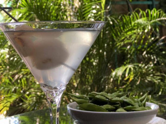 Celebrate National Vodka Day with a refreshing Lychee Martini