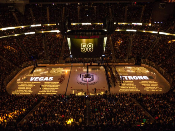 Golden Knights Pay Tribute to First Responders, Medical Professionals (Video and Photos)