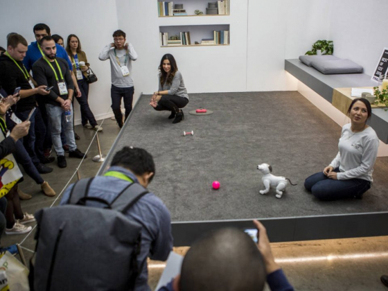 10 cool home gadgets from CES in Las Vegas — PHOTOS
